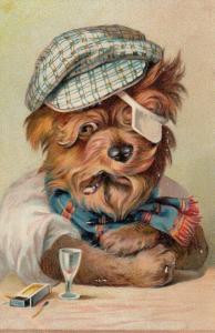 PFB 8168; Dressed Dog at bar , 00-10s