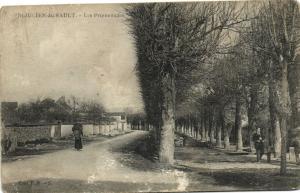 CPA St-JULIEN-du-SAULT - Les Promenades (124733)