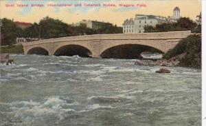 New York Niagara Falls Goat Island Bridge International and Cataract Hotels