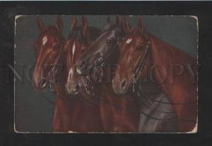 072236 Heads of HORSES vintage Color PC