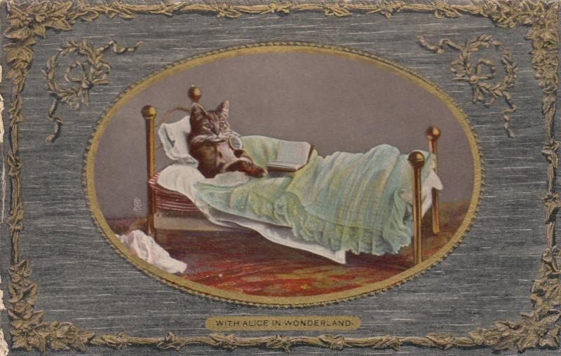Cat in bed reading a book Alice in Wonderland, 1910 ; TUCK 5808