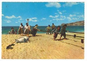 Women and Men hauling fishing nets,  Portugal, 1940-60s