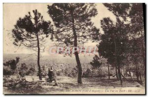 Old Postcard Arcachon A View Foret