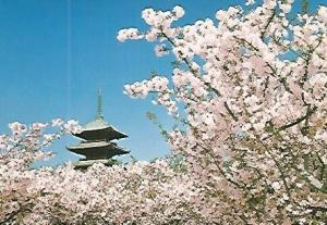 POSTAL 53190: KYOTO. Pagoda del templo de Ninnaji