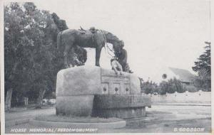 Horse Memorial Perdemonument South Africa Real Photo Postcard