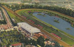 Florida Miami Aerial View Of Hialeah Race Course Curteich