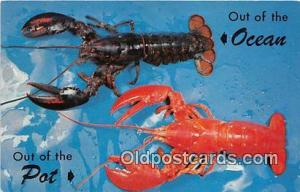 Out of the Ocean, Out of the Pot  Postcard Post Card  Out of the Ocean, Out o...