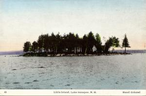 NH - Lake Sunapee. Little Island