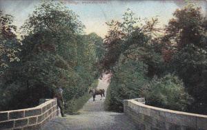 SCOTLAND, PU-1906; Old Bridge, Monkland Glen, Horse, Man On The Bridge