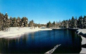 Idaho Island Park Scene On Buffalo River