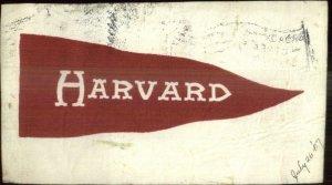 Harvard University LEATHER 1907 Used Postcard