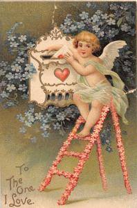 E12/ Valentine's Day Love Postcard 1908 Zanesville Ohio Cupid Flower Ladder 8