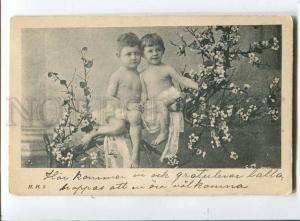 257761 NUDE Kids BOY Elf FAIRY on Tree Vintage HHS postcard