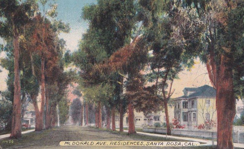 McDonald Avenue Santa Rosa Sonoma County California WW1 1914 Postcard
