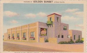 Florida St Petersburg Milne-O'Berry Golden Sunset Citrus Packing Plant Semino...