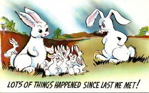 Humour Rabbits Lots Of Things Happened Since Last We Met