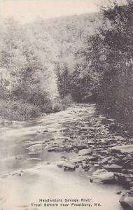 Maryland Frostburg Savage River Trout Stream Albertype