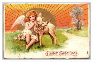 ANGEL   with sheep