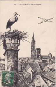 France Strasbourg Nid De Cigignes Storks 1926