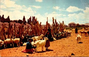 Arizona Navajo Indians With Sheep Herd