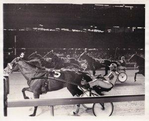 MEADOWLANDS RACE TRACK, Harness Horse Race, LYNDEN VICTORY winner