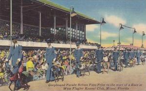Greyhound parade before fans prior to the start of a race at West Flagler Ken...
