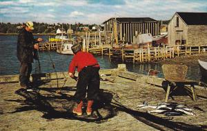 Canada Fishing Village Scene Eastern Shore Nova Scotia