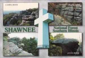 Shawnee National Forest Southern Illinois