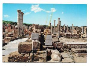 Libya Sabratha Roman Ruins Byzantine Churches 4X6 Postcard
