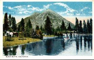 California Black Butte