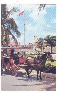 A Carriage Preparing To Take Passengers On A Sightseeing Tour, Nassau, Bahama...