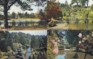 Alton Towers Staffordshire 4x River Lake Postcard s