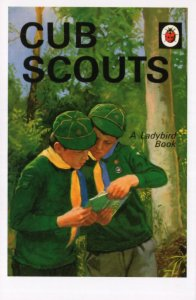 Cub Scouts Scouting Ladybird Boys First Edition Book Postcard