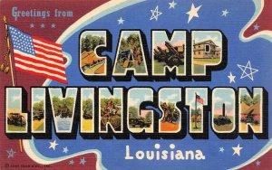 LP65    Alexandria Louisiana  Postcard Large Letters Camp Livingston Military