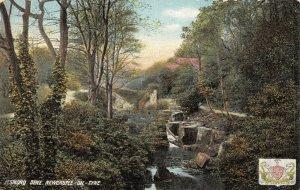 Vintage Tyne & Wear Northumberland Postcard, Jesmond Dene Newcastle On Tyne GM3