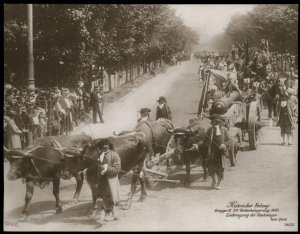 Austria 1908 Kaiser Franz Joseph Huldigungs Festival RPPC 1683 Turkey Sieg 94838