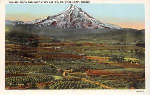 Oregon Mt. Hood ,  Aerial view of  Hood River Valley