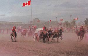 The Chuckwagon races, Calgary Stampede, Calgary,  Alberta,  Canada,  40-60s