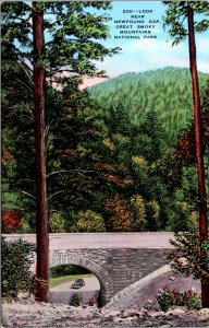 Newfound Gap Loop Great Smokey Mountains National Park Postcard unused 1930s/40s