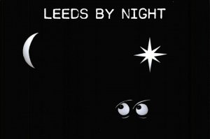 NEW Postcard, Leeds by Night, Humor, Novelty, Fun, Funny DI8