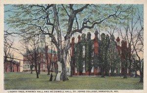 ANNAPOLIS, Maryland, 1910-1930s; Liberty Tree, Pinkney Hall And McDowell Hall