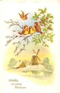 Gelukkig en zonnig Nieuwjaar! New Year! Windmill, Mistletoes, Birds 1960