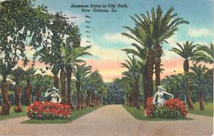 Anseman Drive in City Park New Orleans LA Louisiana 1945 Linen