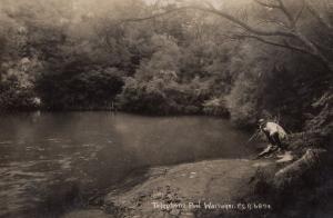 Fishing at Telephone Pool Wairakei Real Photo Postcard