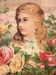 1870's Lovely Lady Buchan's Carbolic Toilet Soap Roses Victorian Trade Card &R