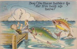 Fishing Humour Boy Do These Babies Go For Live Bait Up Here