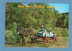 Ozark White Lightnin' Express Vtg Postcard Moonshine Mule Pulling Wagon