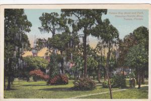 Tampa Bay Hotel And Park, Showing Florida Moss, TAMPA, Florida, 1910-1920s