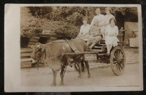 Mint USA Real Picture Postcard RPPC Family In A Cow Wagon