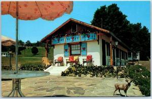 Bushkill, Pennsylvania Postcard MOTEL EDELWEISS Highway 209 Roadside c1960s
